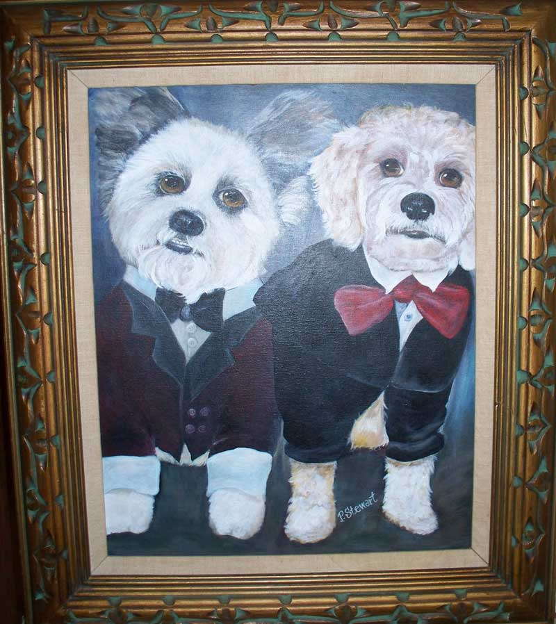 Two Dogs in Tuxedos