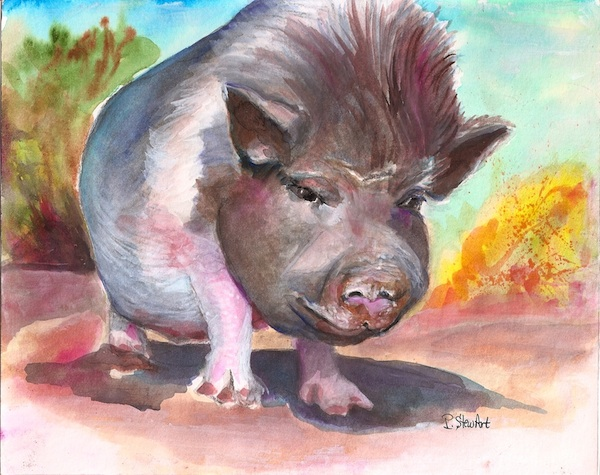 Casey Burns, Watercolor Pig Painting